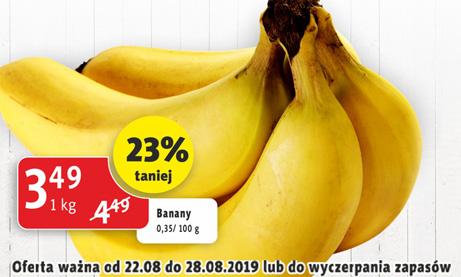 banan_22_28_08_2019