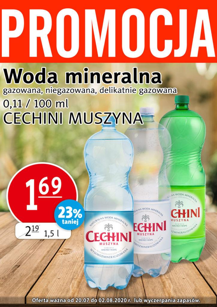 20.07-2.08-Cechini_s